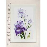 Borduurpakket Irises