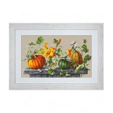 Borduurpakket Pumpkins