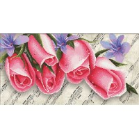 Pink Roses and Music