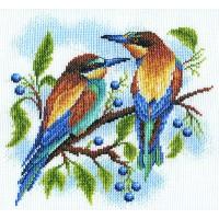 Borduurpakket Birds