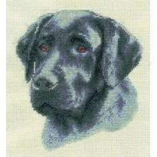 Borduurpakket Black Labrador