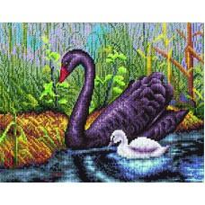 Borduurpakket Black swan