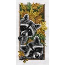 Borduurpakket Curious raccoons