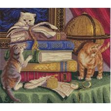 Borduurpakket Kittens with books