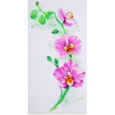 Borduurpakket Orchid