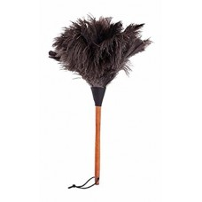 Struisvogel plumeau